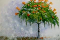 52. Tree, Madeira